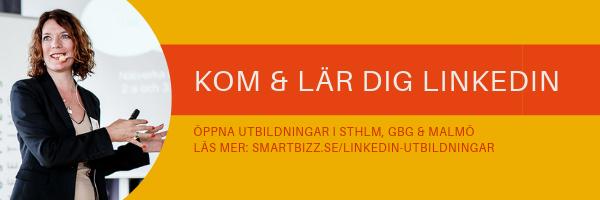 LinkedIn utbildning