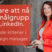 målgrupp LinkedIn annons campaign manager