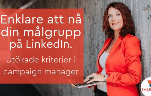 målgrupp LinkedIn annons campaign manager